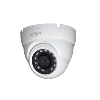 Dahua IPC-HDW4231M - 2MP IR Eyeball Network Camera